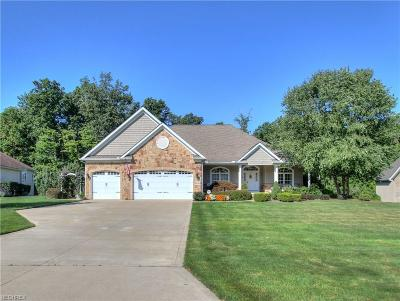 Lake County Single Family Home For Sale: 8196 Rainbow Dr
