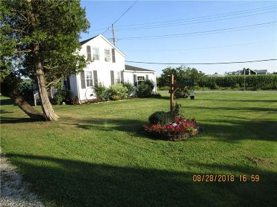 Geauga County Single Family Home For Sale: 16011 Claridon Troy Rd