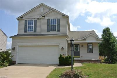 Brecksville, Broadview Heights Single Family Home For Sale: 437 Carrington Ln