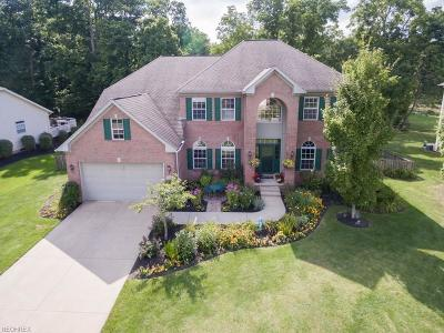 Twinsburg Single Family Home For Sale: 9356 Wallingford Dr