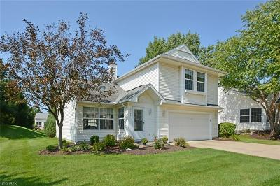 Olmsted Falls Single Family Home For Sale: 9142 Fern Cove East