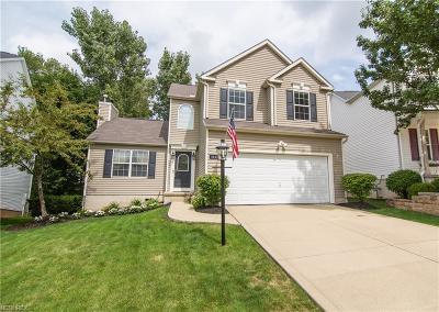 Brunswick Single Family Home For Sale: 4443 Newcastle Cv