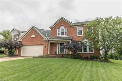 Twinsburg Single Family Home For Sale: 2182 White Marsh Dr