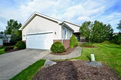 Brunswick Single Family Home For Sale: 3447 Amesbury Ln