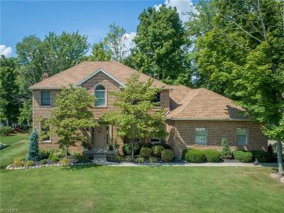 Wadsworth Single Family Home For Sale: 334 Carol Way