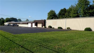 Kingsville Commercial For Sale: 4761 State Route 193