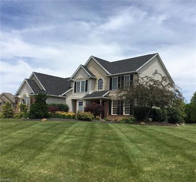 Medina Single Family Home For Sale: 4187 Fox Meadow Dr
