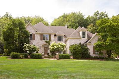 Avon Lake Single Family Home For Sale: 32313 Brandon Pl