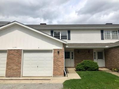 Twinsburg OH Condo/Townhouse For Sale: $104,400