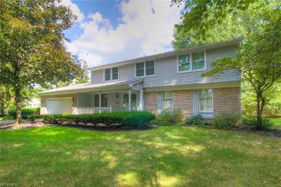 Canfield Single Family Home For Sale: 613 North Briarcliff Dr