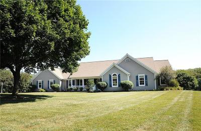 Zanesville Single Family Home For Sale: 1460 Spry Rd