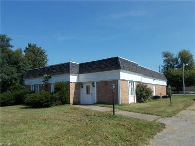 Ashtabula County Commercial For Sale: 6280 S Main Street