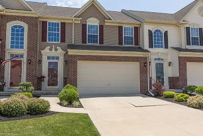 Painesville Township Condo/Townhouse For Sale: 959 Tradewinds Cv #D