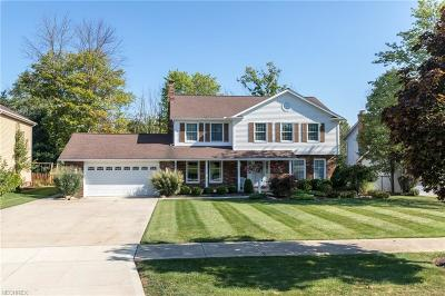 Solon Single Family Home For Sale: 37005 Valley Forge Dr