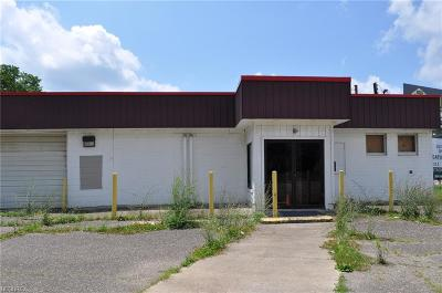Zanesville Commercial For Sale: 1425 West Main St