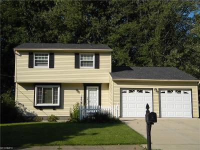 Painesville Single Family Home For Sale: 575 Trailwood Dr