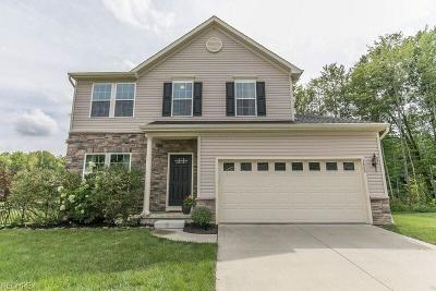 Kent Single Family Home For Sale: 3860 Willow Way