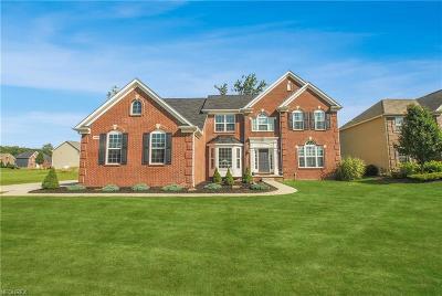 North Royalton Single Family Home For Sale: 3998 Marcella Dr