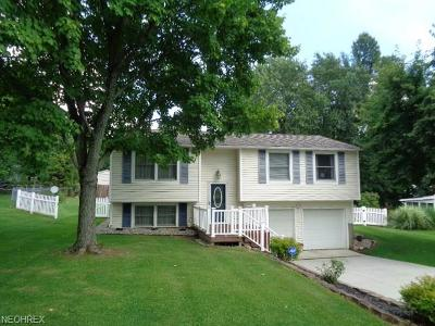 Single Family Home For Sale: 4811 Debbie Dr