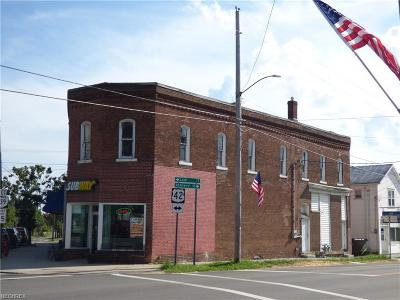 Commercial For Sale: 8 South Main St