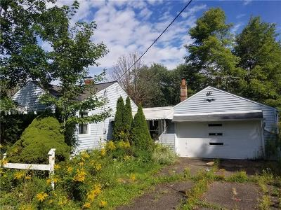 Newbury Single Family Home For Sale: 10950 Bell Rd
