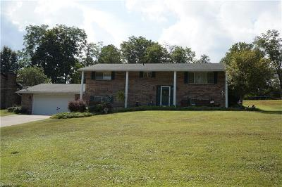 Williamstown Single Family Home For Sale: 396 Maple Dr