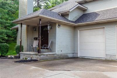 Medina County Condo/Townhouse For Sale: 330 West Lafayette Rd