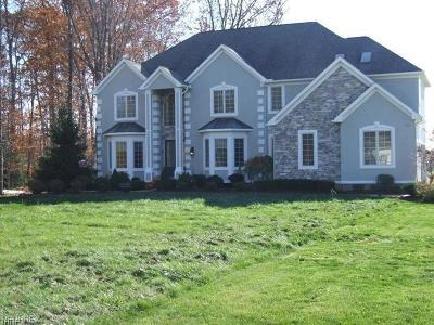Lake County Single Family Home For Sale: 10565 Rocking Horse Trl