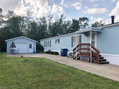 Painesville Township Single Family Home For Sale: 451 Sandtrap Cir