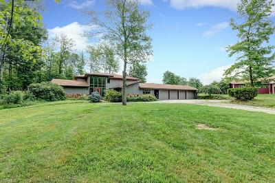 Geauga County Single Family Home For Sale: 11423 County Line Rd