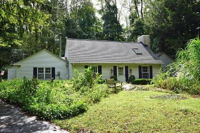 Geauga County Single Family Home For Sale: 9915 Music St
