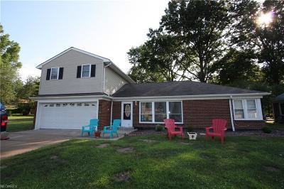 Seven Hills Single Family Home For Sale: 2864 Chestnut Rd