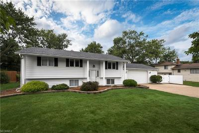 Strongsville Single Family Home For Sale: 16400 Howe Rd