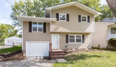 Newton Falls Single Family Home For Sale: 327 Washington Ave