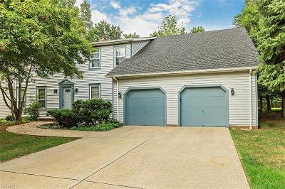 Solon Single Family Home For Sale: 34611 Summerset Dr