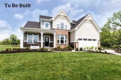 Medina Single Family Home For Sale: 5555 Boucher Cir