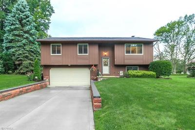Madison Single Family Home For Sale: 1314 Erieview Dr