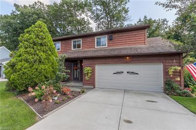 Olmsted Falls Single Family Home For Sale: 25401 Tyndall Falls Dr
