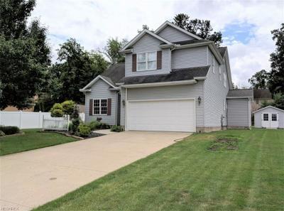 Poland Single Family Home For Sale: 3831 Atlantic Ct