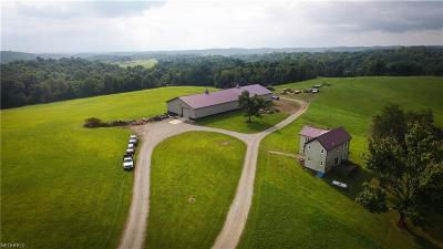 Guernsey County Single Family Home For Sale: 7080 Cubbison Rd