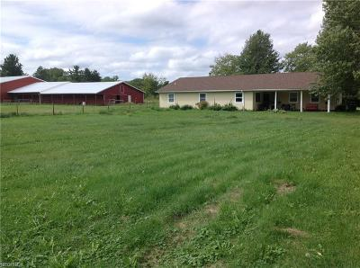 Geauga County Single Family Home For Sale: 18624 Geauga Lake Rd