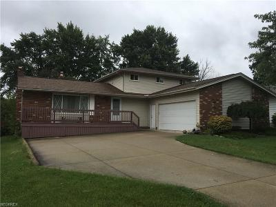 Brunswick Single Family Home For Sale: 4697 Hickory Ridge Ave