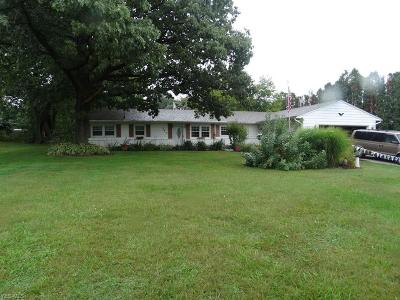 Wadsworth Single Family Home For Sale: 263 Leatherman Rd