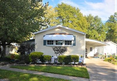 Olmsted Township Single Family Home For Sale: 4 Sunrise Blvd