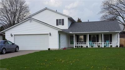 Amherst OH Single Family Home For Sale: $175,000