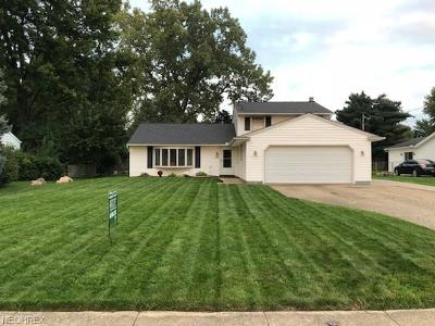 North Ridgeville Single Family Home For Sale: 6889 Pitts Blvd