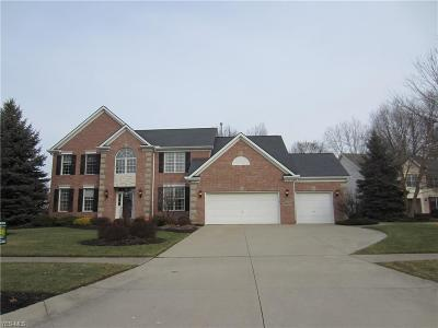Strongsville Single Family Home For Sale: 11963 Fox Grove