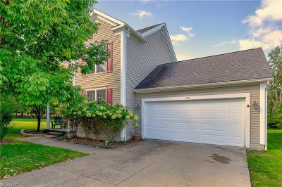 South Euclid Single Family Home For Sale: 672 Monticello Place Ln