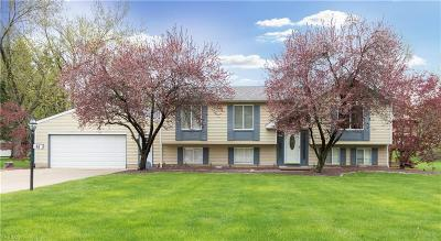 Canfield Single Family Home Active Under Contract: 48 Skyline Drive