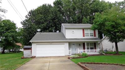 Painesville Single Family Home For Sale: 810 Derby Dr